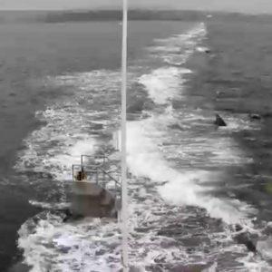 Rockland Breakwater Webcam